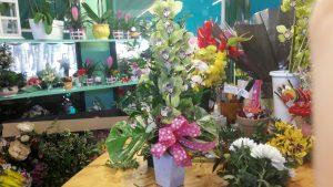 chiosco-fiori-cisl-cesena